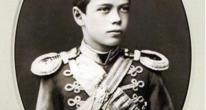 Цесаревич Николай Александрович. 1879 год.